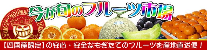 四国のフルーツ/果物の通販。お取り寄せサイト。新鮮市場【産直あきんど】