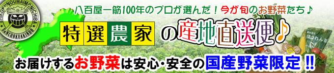 四国のお野菜の通販/宅配は新鮮市場【産直あきんど】