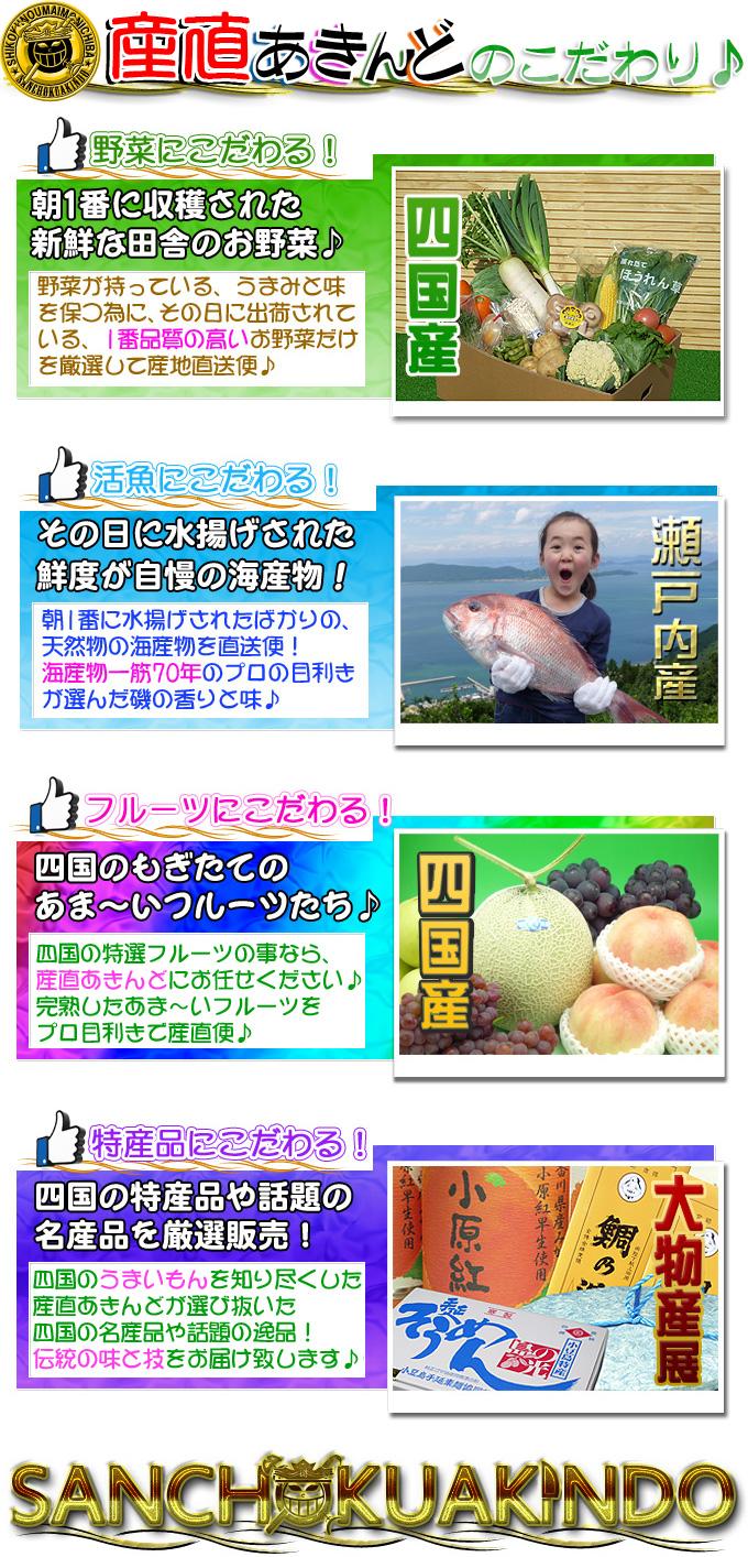 四国の野菜・フルーツ・海産物の事なら新鮮市場【産直あきんど】
