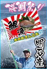 明石の天然鯛!お取り寄せ通販便!
