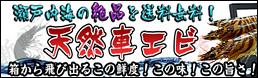 瀬戸内海産!天然くるまえびの通販/お取り寄せサイト