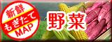 西日本の野菜!放射能検査済み